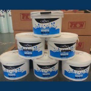 Anti-Mould Emulsion 10L - Magnolia - Preservation Shop